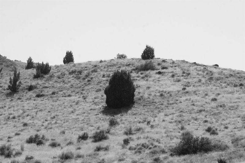 high desert Mountains High Desert Sage Brush Landscape Mountain Road Mountain Trails Jeeplife EyeEmNewHere Idahome Idaho