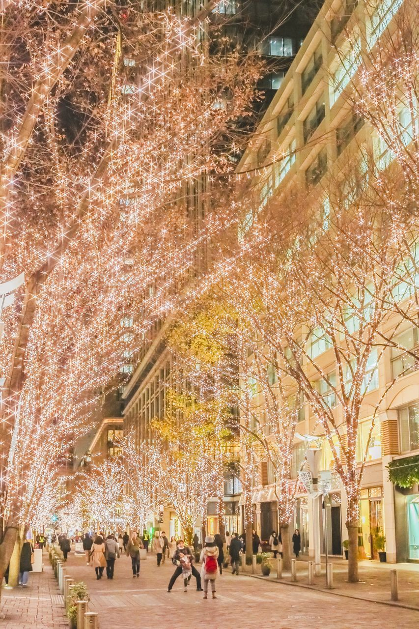 tree, architecture, city, group of people, plant, built structure, city life, building exterior, travel destinations, incidental people, walking, real people, illuminated, women, nature, motion, adult, street, flower, people, cherry blossom, outdoors, springtime, cherry tree