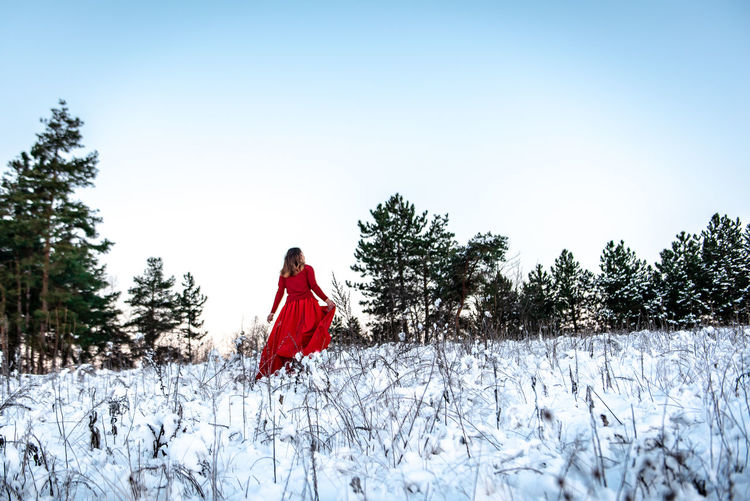 Morning Light Green White Background Pinetrees Tree Forest Copy Space Natural Snowy Cold Temperature Winter Snow Girl Woman In Red Red Dress Red Outdoors Nature Women One Person Land Beauty In Nature Young Adult Field