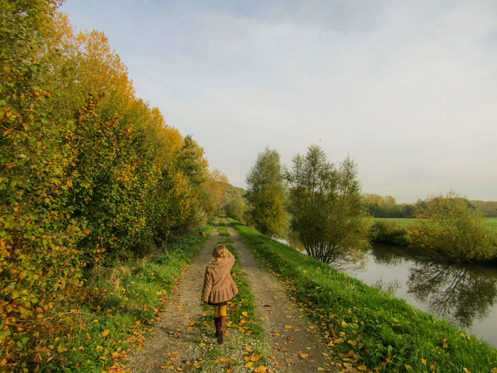 Rear view of girl on road amidst trees against sky