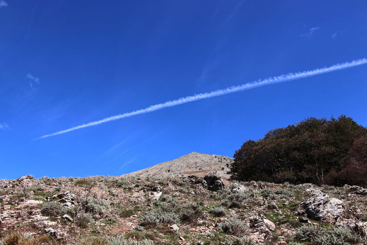 Low angle view of vapor trail in sky