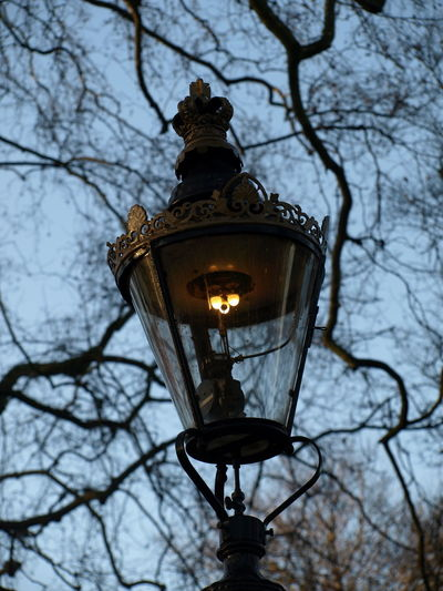 Bare Tree Blue Branch Close-up Cloud - Sky Cute Dark Day Dusk Evening Gas Light Lamp Light Lighty London LONDON❤ Nice No People Old Outdoors Sky Street Light Tree Winter Wintertime