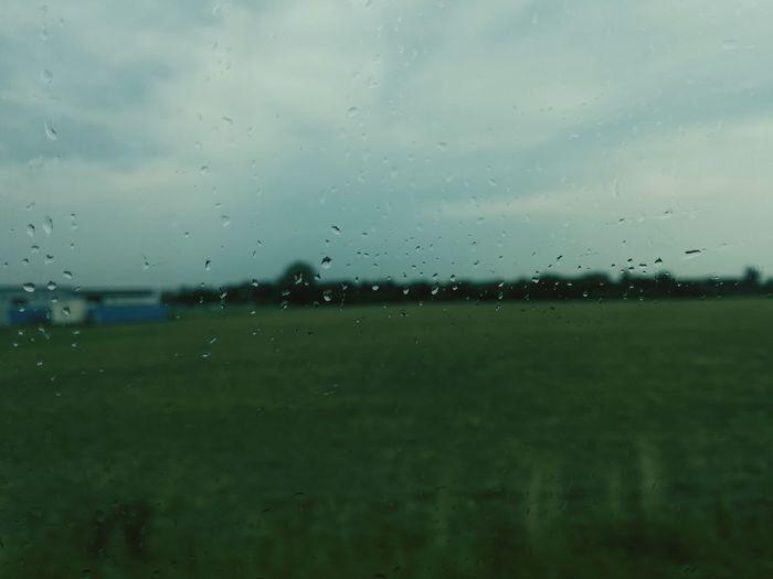Rainy day Wet