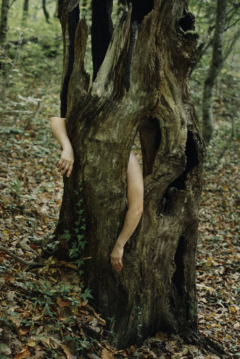 Midsection of woman on tree trunk in forest
