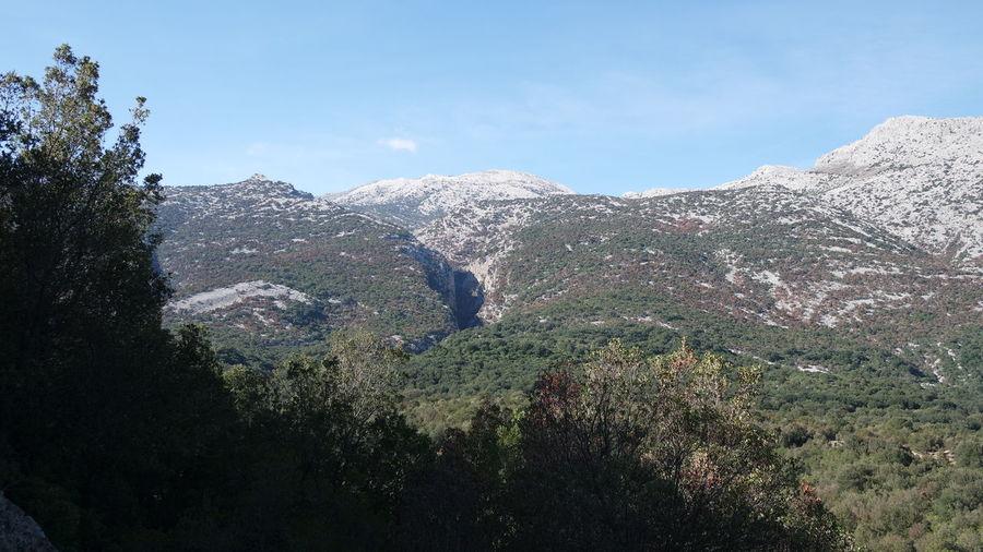 Go Higher Mountain Multi Colored Sardegna Magnificentsardegna Landscape Photography Picsoftheday
