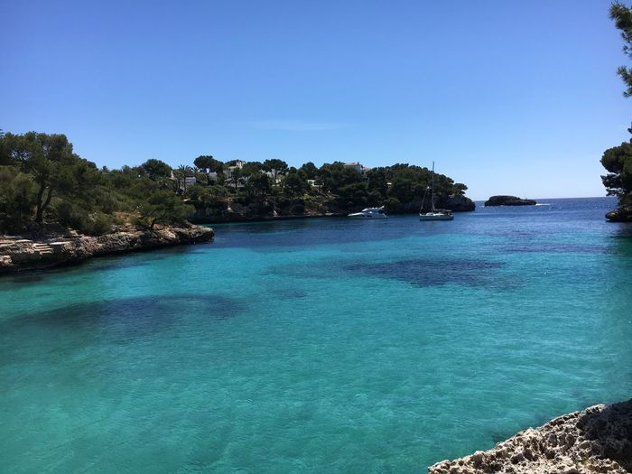 Beautiful Beach at Mallorca Beach Life Beautiful Place Beautiful Nature SPAIN Cala Ferrera Mallorca Beach Beachphotography Water Tree Blue Sky Beauty In Nature Scenics - Nature Plant Clear Sky Tranquility Tranquil Scene Nature Sea Day No People Idyllic Copy Space Swimming Pool Pool Land Turquoise Colored