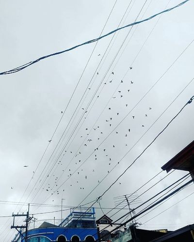 """""""May be one day we'll find the place where our dreams and reality collide."""" 🐦☁🍃☔🍀☺😚😉 Darkclouds Instaphoto Birds Flying Instaanimal Quotesoftheday  Birdsareflying Lucban Selstagram Ynasadventure Sky Skyporn Photooftheday Maya Neighborhood Map"""