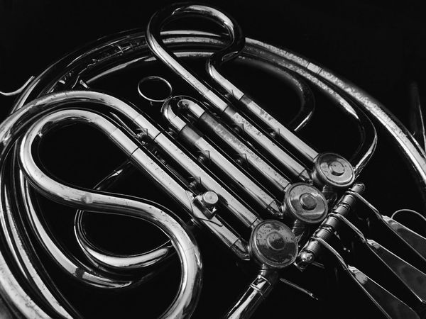 Black Background Brass Instrument  Classical Music Close-up Day French Horn Indoors  Metal Music Musical Instrument No People Wind Instrument