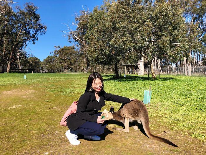 喂袋鼠 Have Fun Hello World Travel Plant Mammal Tree Animal Domestic Animals Sunlight Nature Grass