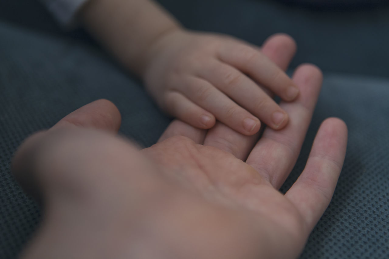 human hand, hand, human body part, real people, body part