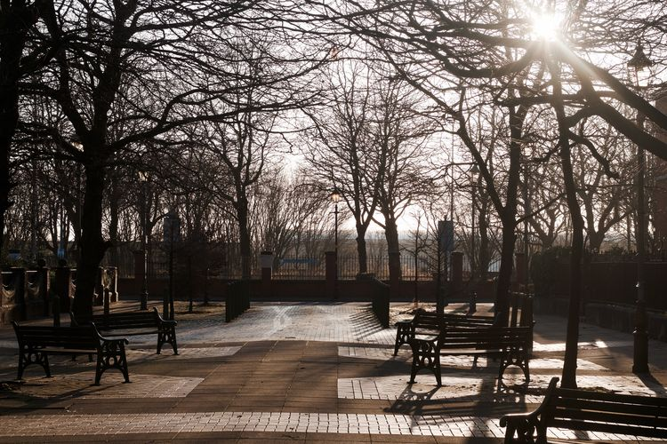 The park at
