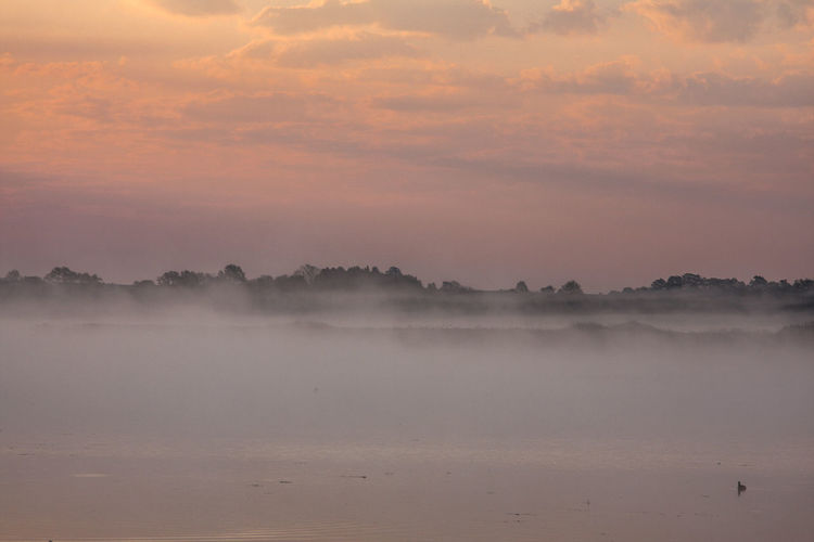 Federsee Beauty In Nature Day Fog Hazy  Idyllic Landscape Mist Nature No People Outdoors Scenics Sky Sunset Tranquil Scene Tranquility Water