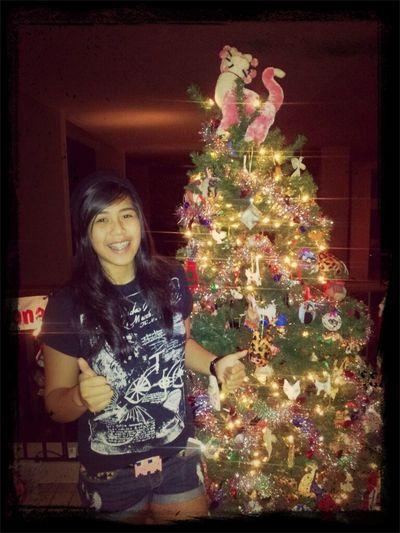 Cat Christmas Tree!!!!