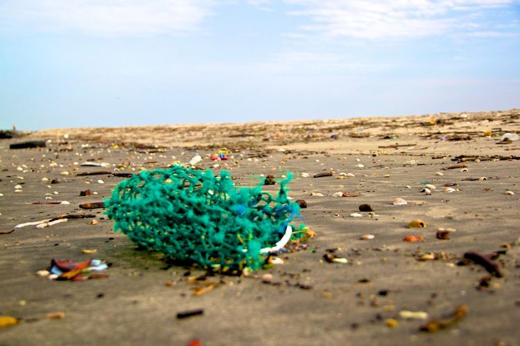 Polluted beach covered by washed up garbage