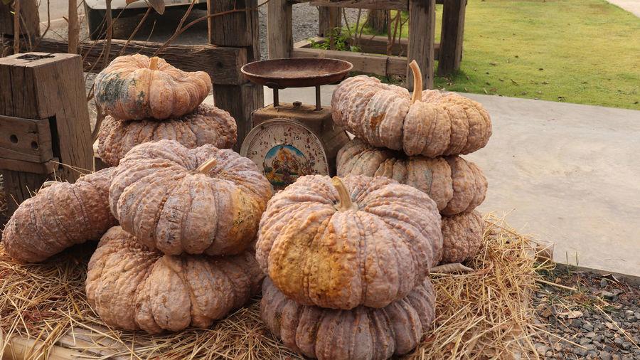 Stack of pumpkins for sale