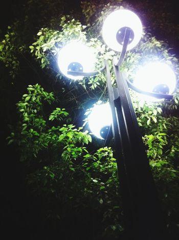 被质疑的灯杆在篮球场边。