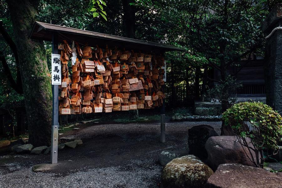 Ema boards at Odawara Castle Buddhist EMA Japan Japan Photography Odawara Odawara Castle / Japan Shinto Shrine Shinto Temple Shrine Shrine Of Japan Wishes Ema Woden Board Ema Wood Wishing Shinto Shinto Of Japan Shintoism Wood 絵馬