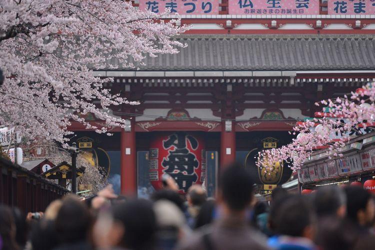 People against hozomon at asakusa kannon temple