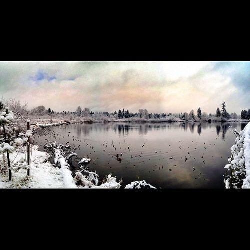 Larsen Lake panoramic. LarsenLake Bellevue Pano Snapseed lake winter snow