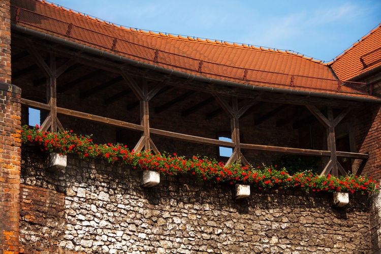 Low angle view of flowering plants on bridge against building
