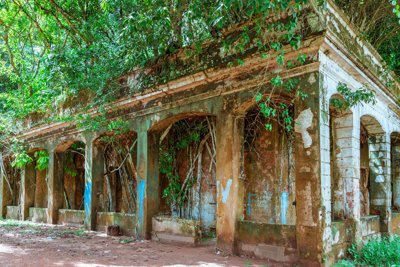 Ruins of Paricatuba - House built in Paricatuba, state of Amazonas, in the year of 1889, first used as a shelter for Italian immigrants, and later was a high school of arts and crafts, a public jail and a leprosarium. Abandoned Buildings Amazon Amazonas Green House Paricatuba Ruins Trees