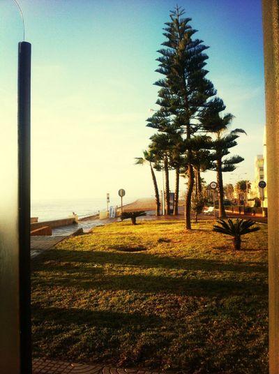 Un día precioso en Andalucía ?
