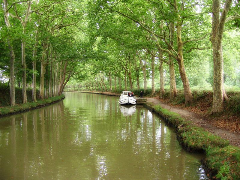 Early morning on the canal du midi, France Beauty In Nature Boat Canal Canals And Waterways Forest Mode Of Transport Outdoors Reflection River Towpath Tranquility Tree Water Waterfront