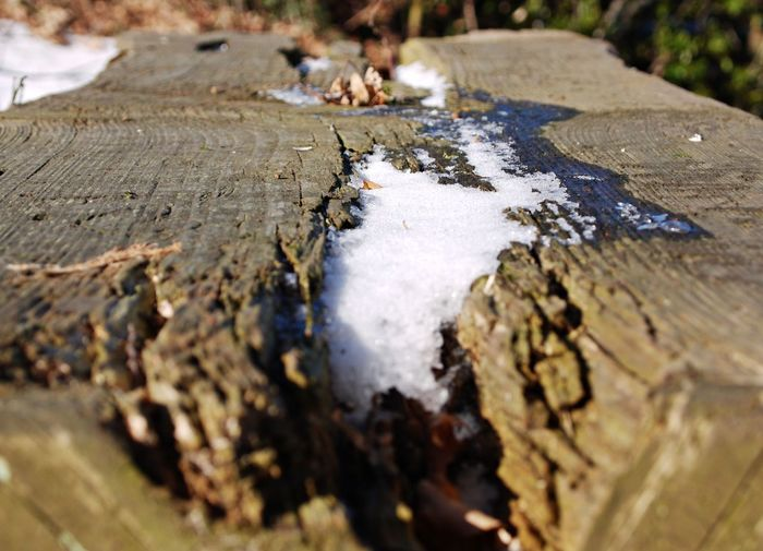 Beauty In Nature Close-up Day Desk Nature No People Outdoors Snow Wintertime Wood - Material Wooden Desk