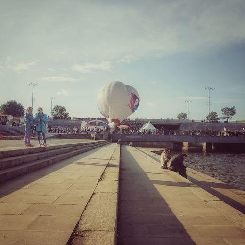 Sir balloon Embankment Balloon Air Vehicle Air Sky Vehicle Street Art Empty Road Airshow