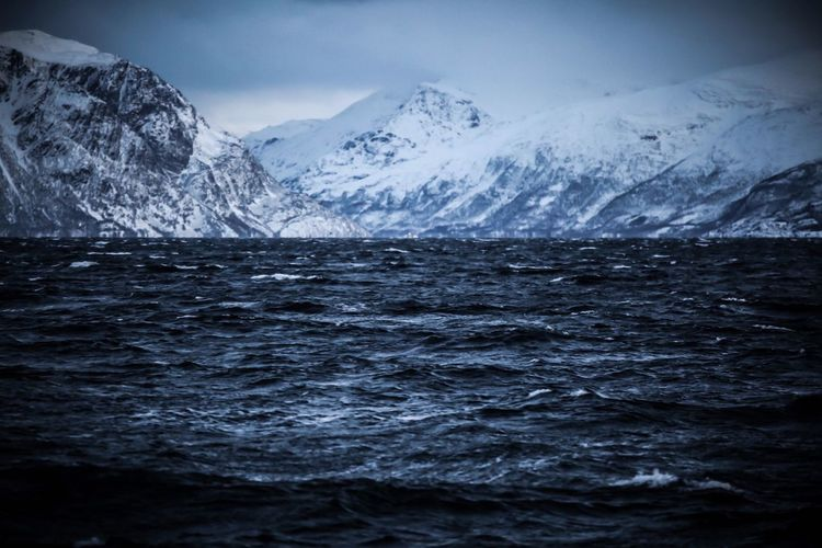 Arctic Skjervøy Norway Mountain Cold Temperature Beauty In Nature Water Snow Winter Scenics - Nature Sea Snowcapped Mountain Nature Ice Outdoors First Eyeem Photo