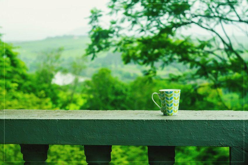 Justclick Kaushalgokarankar'sphotography Outdoors Travel Photography Nature Green Color Focus On Foreground Talegaon Morning Tea