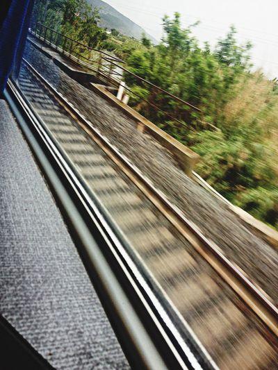 Train Circeo