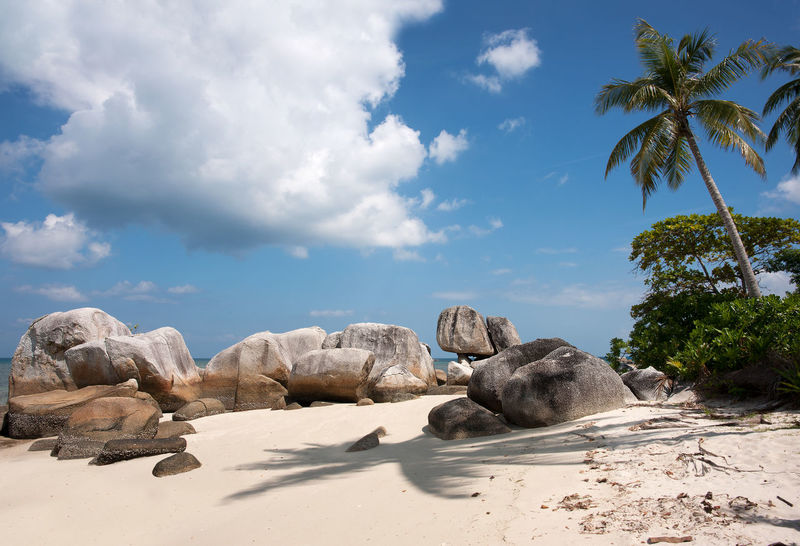Natural rock formation on white sand beach in Belitung Island in the afternoon, Indonesia. Banka Beach Belitung Belitung Indonesia Belitung Island Coastline Landscape Daytime Granite Formations Granite Rocks Ocean Pristine Rocks And Water Rocks On The Shore Seaside Stones Sumatra  Summer Tanjung Tinggi Tranquil Scene Tranquility Travel Destinations Tropical Climate Vacation Destination White Sand Beach