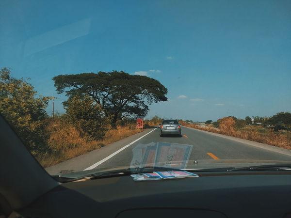 Car Tree Transportation Road Land Vehicle No People Water