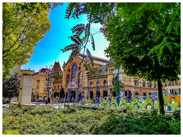 The covered market. Travel Destinations Turistic Attractions Hungary Tredition Tree Sky Architecture