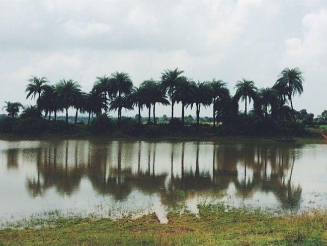 India, Rikhia