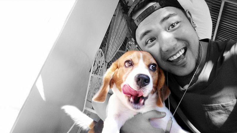 Splashphotography Dog Pets Furbaby Beagle Bond Smiles