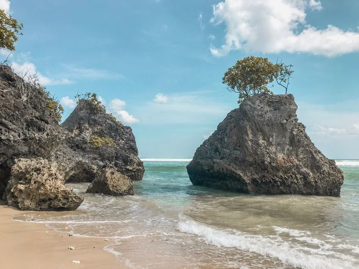Seascape Bali Indonesia Sea View Seaside Tropical Paradise Tropical Climate Tree On Rock Sand Beach Ocean Waves Water Sky Sea Cloud - Sky Nature Beach Beauty In Nature Land Tranquility Scenics - Nature No People Rock Plant Tranquil Scene Tree Rock - Object Sunlight Outdoors Horizon Over Water
