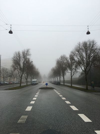 Morning mist in CPH🌫☁️ The Way Forward Mode Of Transport Road Sign Car Road Marking Road Electricity Pylon Bare Tree Misty Morning Mist Grey Morning Winter Loneliness