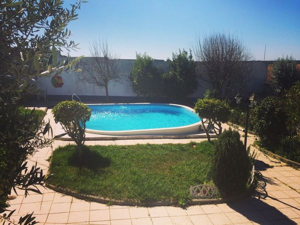 Home sweet home! Casa Home Sweet Home Piscina Pool Tree Growth Swimming Pool Alentejo,Portugal AlentejoWatereSunlighthtPlantnBeauty In NaturerNo PeoplelDayaOutdoorsrs