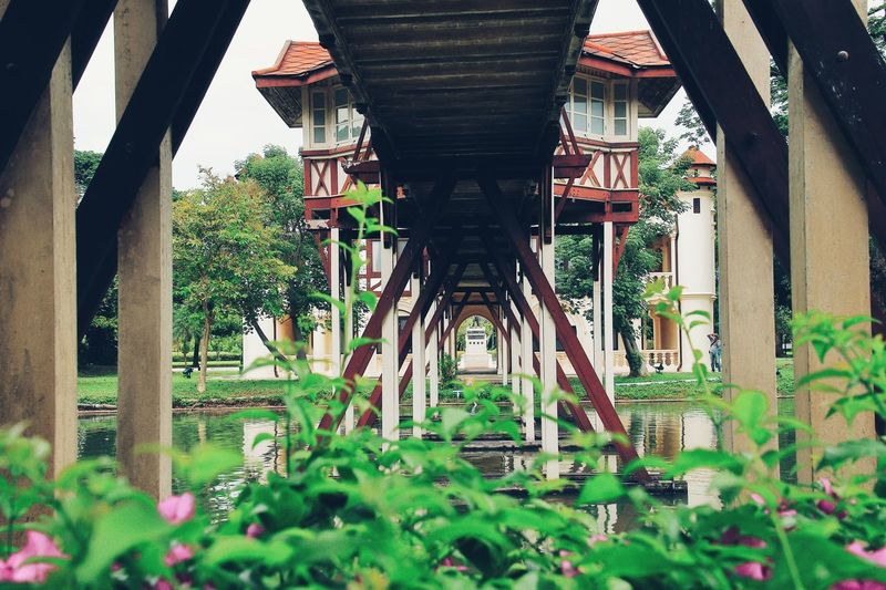 Sanam Chan Palace, Located in Nakhon Pathom, Thailand Palace Thailand Travel Bridge Bridge Thailand Travel Thailand Sanam Chan Palace Architecture Plant Building Exterior Day EyeEmNewHere Outdoors Garden Building