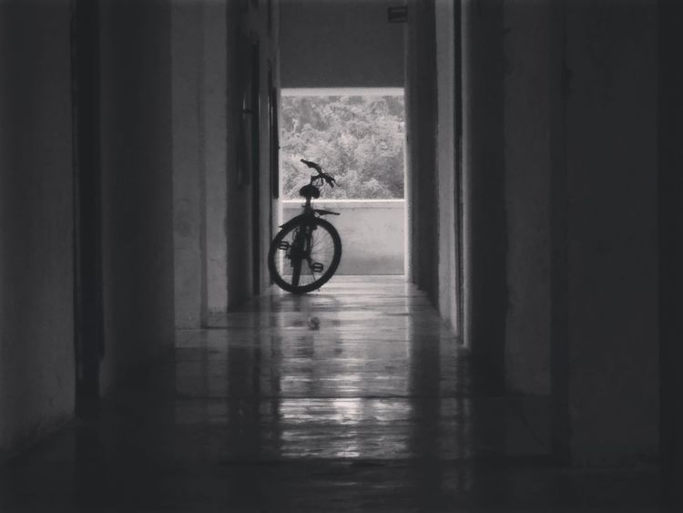 EyeEm Selects Bicycle Indoors  Calmness Backlight And Shadows No People Hanging Outdoorslife Fun Begins Transportation Day One Person People Cycle Pics