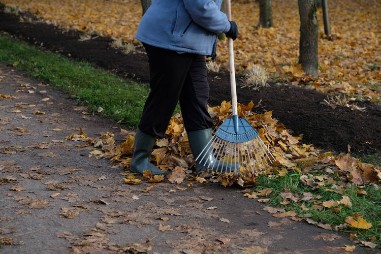 Low section of man raking leaves on street during autumn