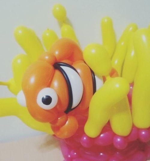 イソギンチャク とクマノミ 過去作品 カクレクマノミ おさかな ニモ バルーンアート バルーン ツイスト 風船 Balloon Balloonart Twist Twister Balloontwister Likeforlike Like4like Like Instalike Instagood Instafollow Followme BalloonArtist