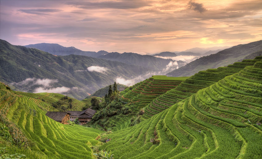 the village of pingan located in longji rice terraces Adventure Agriculture Beauty China Cloud - Sky Exploring Farm Farming Field Guangxi Landscape Longji Rice Terrace Longsheng Mountain Nature No People Paddy Field Ping An Rice Field Rice Paddy Rural Scene Sunset Travel Valley Village