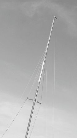 Black And White Photography Bird Photography Bird Watcher Steel Cable Boat Poles Gabbiano Seagull Italy