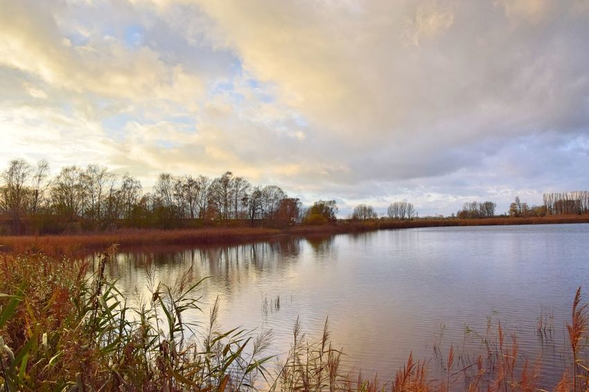 Evening Light Linumer Teichlandschaft Nature Photography Beauty In Nature Cloud - Sky Day Evening Sky Grass Lake Linum Nature Nature_collection Naturelovers No People Outdoors Reflection Scenics Sky Sunset Tranquil Scene Tranquility Tree Water