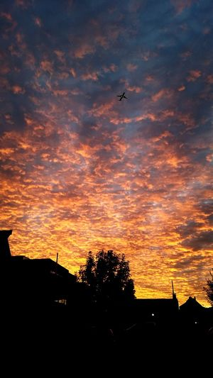 Abendrot Flight Burningplane