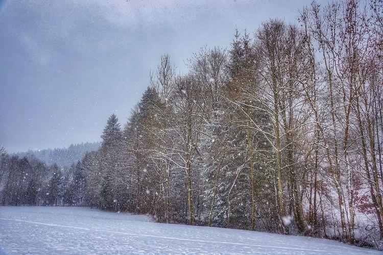 Schnee mit