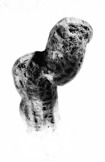 Peanut White Background No People Close-up Day Goober Healthy Eating Tree Trunk Food And Drink Indoors  Staple Shells Black And White